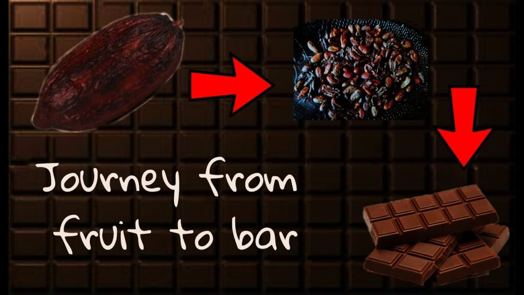 Journey from fruit to bar!!! Chocolate making!!!!